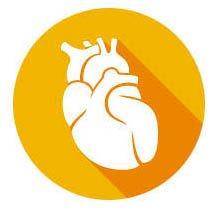 Cardiovascular & Renal