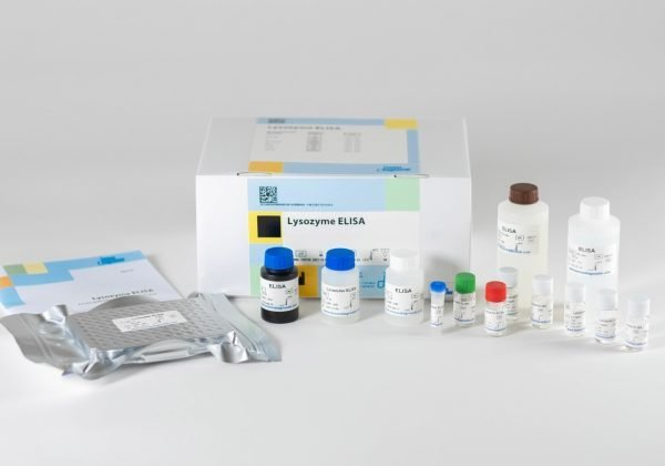 The components of the Immundiagnostik Lysozyme ELISA laid out in front of a white background.
